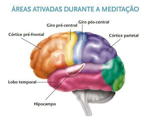 AREAS+ATIVADAS+DURANTE+A+MEDITA%C3%87%C3