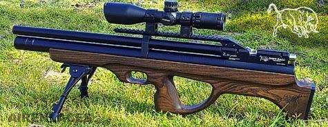 PCP Airguns