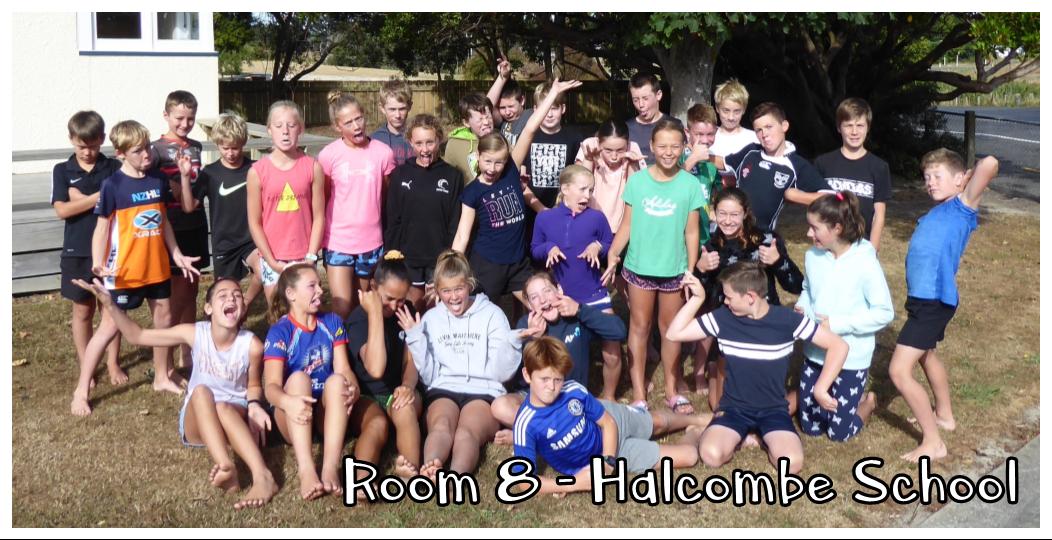 Room 8 - Halcombe School - 2020