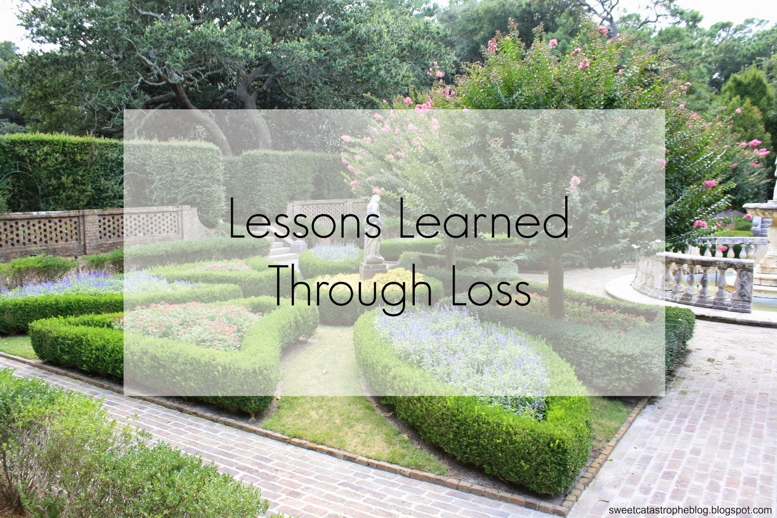 Lessons Learned Through Loss | Sweet Catastrophe Blog