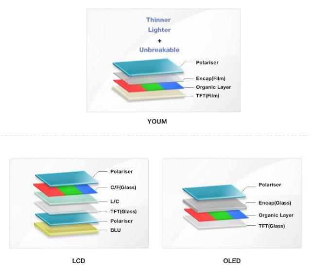 Youm+structure.jpg