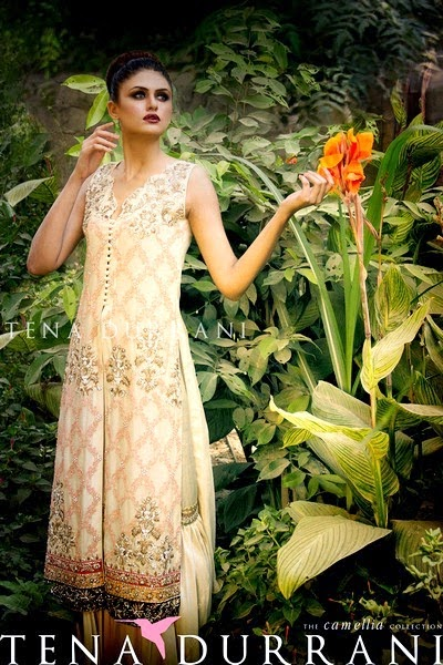 Tena Durrani Camellia Formal Collection