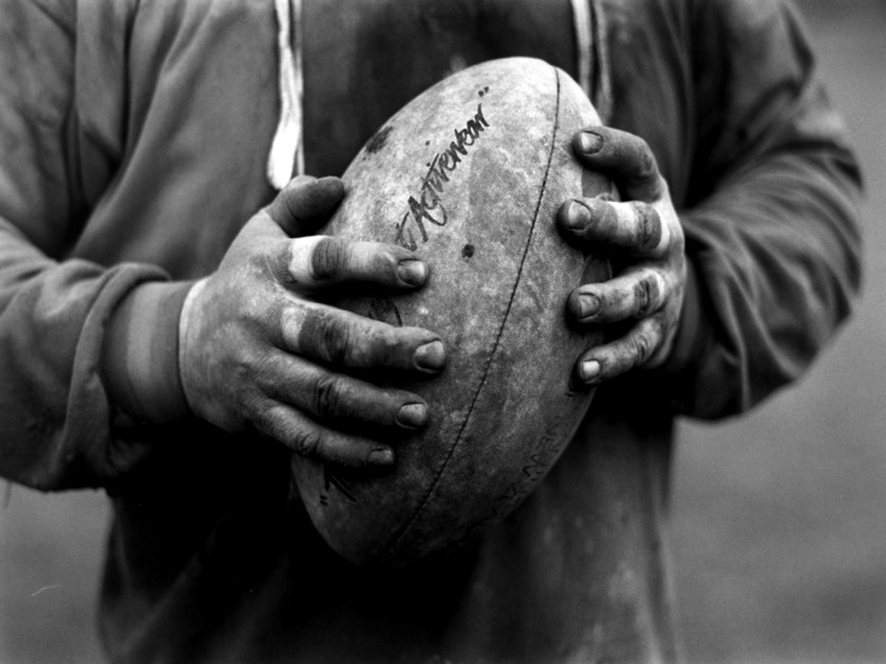 welcome to free article quote: rugby wallpaper
