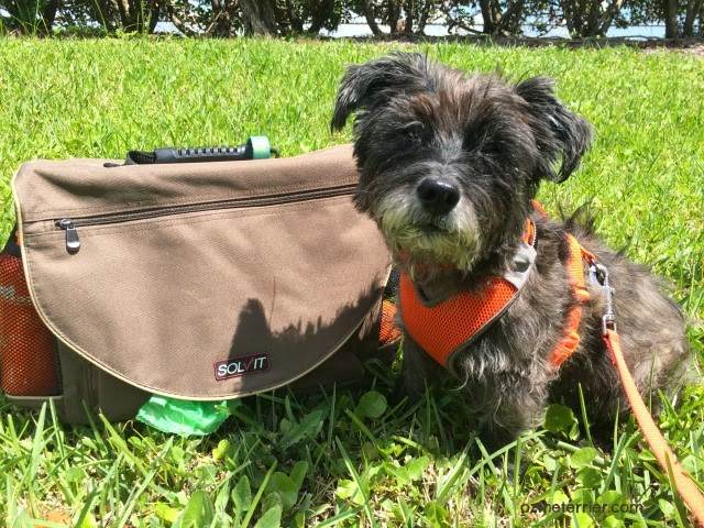 Solvit Products HomeAway Travel Organizer for Pets