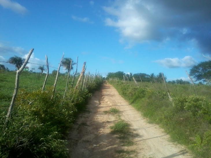 Situação das estradas da zona rural de Serrinha é a pior possivel