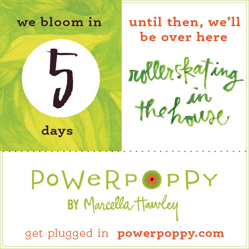 http://powerpoppy.com/