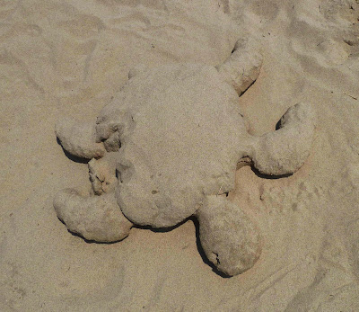 Sandcastle Turtle Sculpture