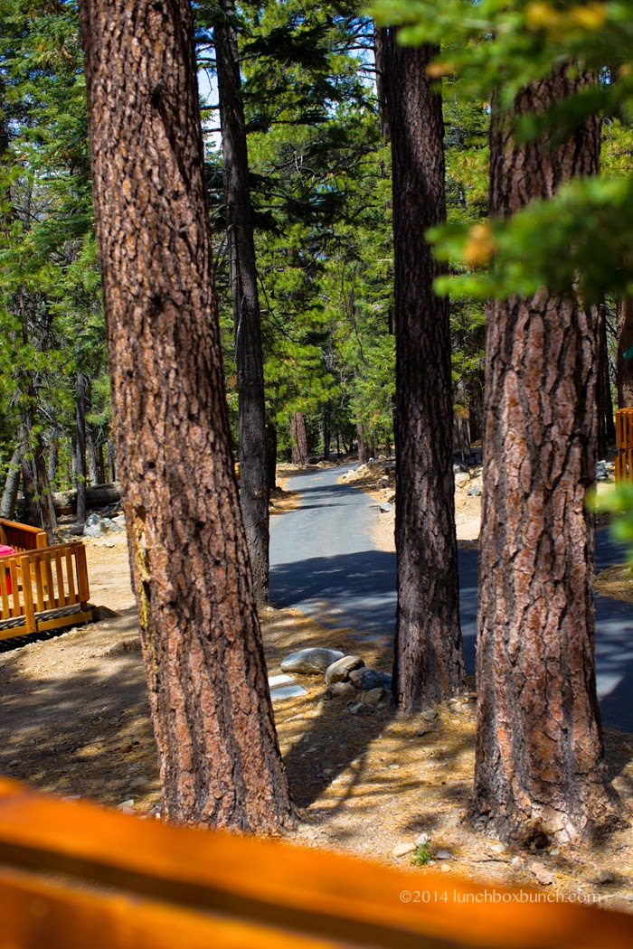 camp blogaway scenery