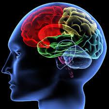 mempertajam memori otak