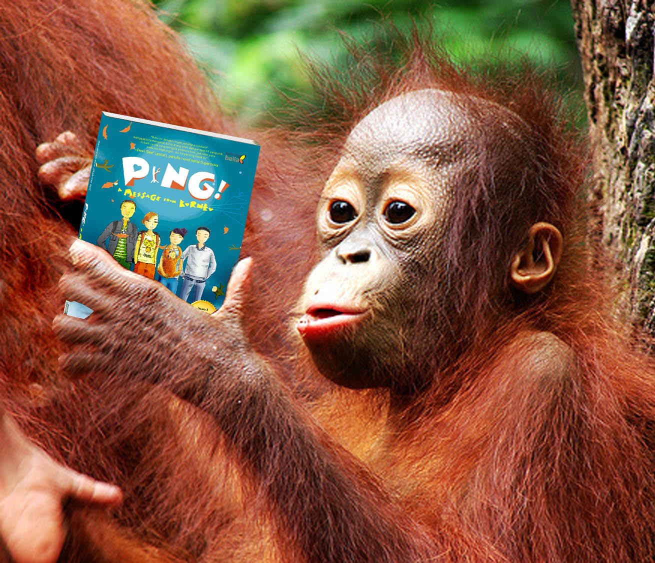 Be A Writer A Message From Borneo Happy Birthday Maru