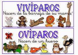 http://www.juntadeandalucia.es/averroes/centros-tic/41009470/helvia/aula/archivos/repositorio/0/56/html/datos/02_cono/act/act/u01/0103.htm