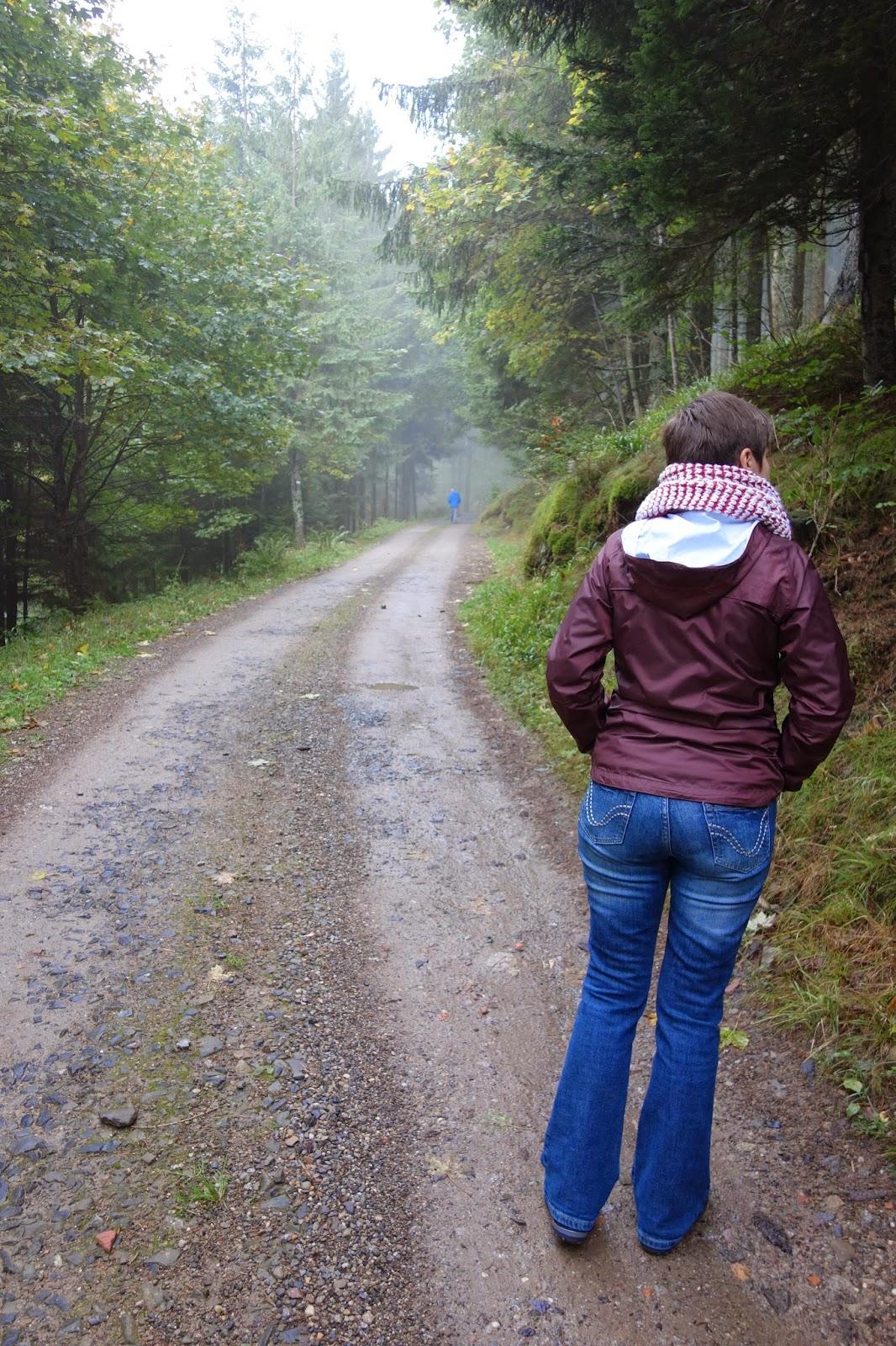 Дорога к ферме-1