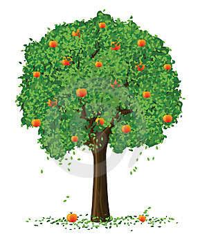 "bintancenter.blogspot.com - ""Renungan"" Al-Kisah Ali dan Pohon Apel"