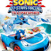 Download Sonic and All Stars Racing Transformed Free PC Game