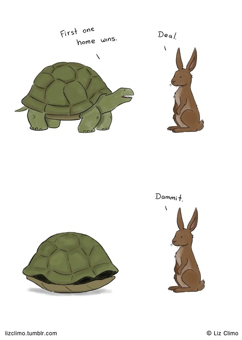 Turtle and rabbit