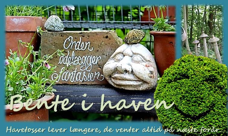 Bente i haven