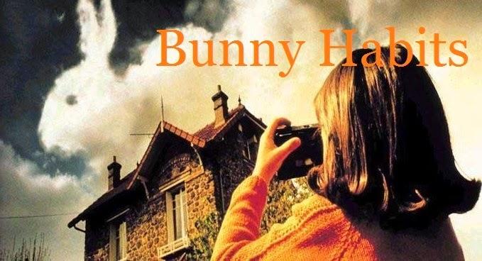 Bunny Habits