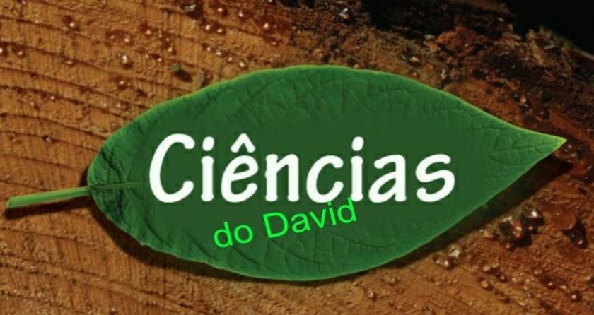 .: Ciências do David :.