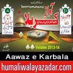 http://audionohay.blogspot.com/2014/10/aawaz-e-karbala-nohay-2015.html