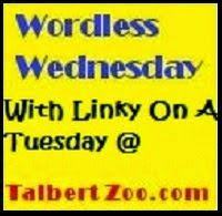 Talbert Zoo - Wordless Wednesday