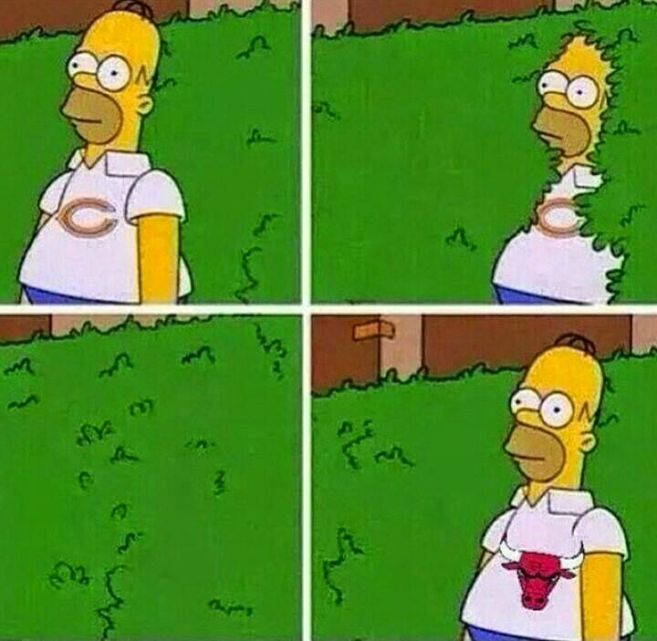 Chicago bears. chicago bulls - Homer Simpson bush