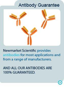 Antibody Guarantee