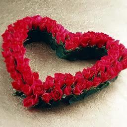 Kata Motivasi Cinta Terbaru Kata Bijak Penyemangat Cinta