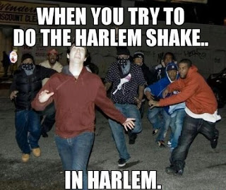When you do the harlem shake in harlem