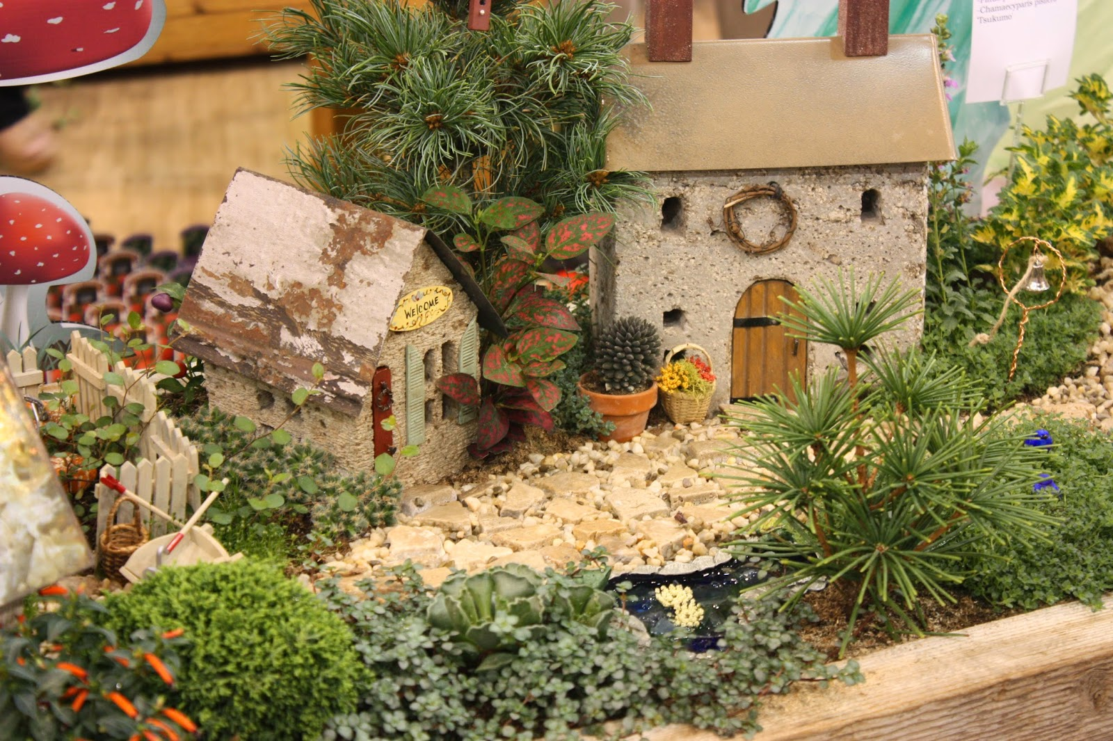 garden thyme with the creative gardener creative fairy garden ideas