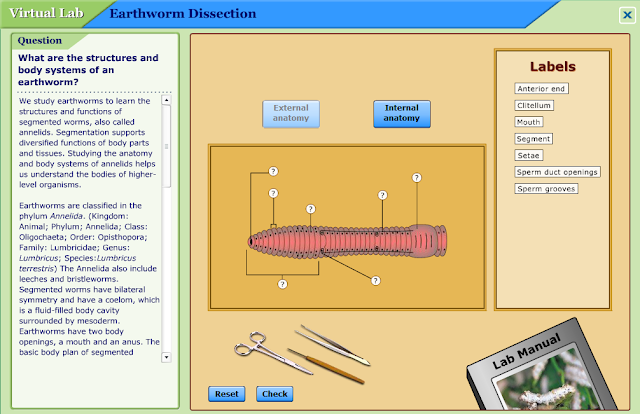 Images Of Earthworm Anatomy Quiz Golfclub