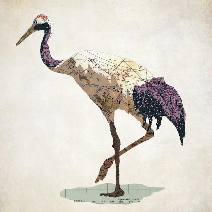 02-Japanese-Crane-Jason-LaFerrera-Cartography-Shaped-to-make-Map-Animals-www-designstack-co