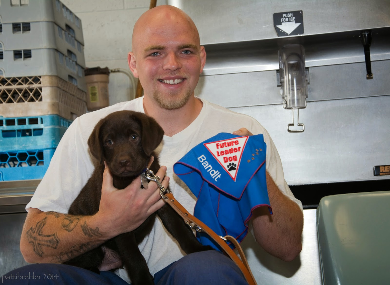 "The bald man in the white t-shirt is sitting down facing the camera with the chocolate lab puppy in his lap. He is supporting the puppy with his right forearm and hand and holding a blue Future Leader Dog bandana with his left hand. The bandana has the name ""Bandit"" embroidered on it. There is a brown leash handing down from the puppy's collar. Behind the man is an ice maching on the right and a pile of milk crates on the left."