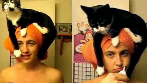 Kucing Super Gokil yang Suka Duduk di Atas Kepala Pemiliknya, Lihat Aksinya