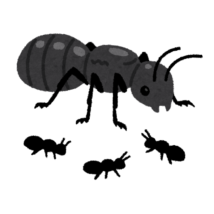「蟻 画像」の画像検索結果