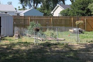 Backyard Makeover: Garden Fence and More