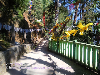 trekking routes sikkim