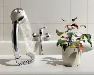 Shower and Plant Wallpaper 1280x1024