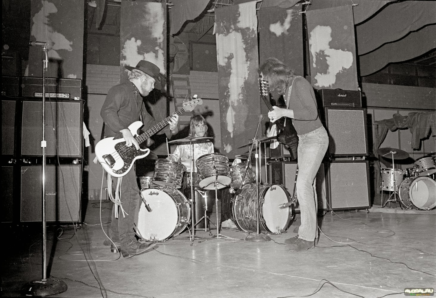 The jungle of rock n roll fotos interessantes do mundo do for Best old pictures