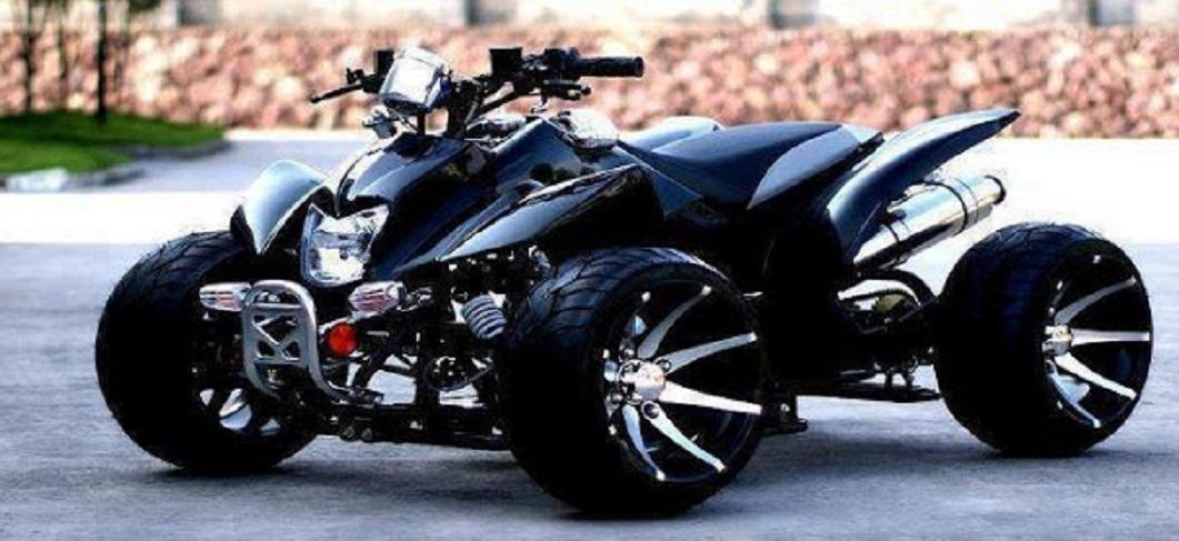 Car Bike Fanatics Monster Buggy