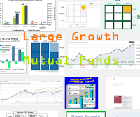 Top Large Growth Mutual Funds 2015