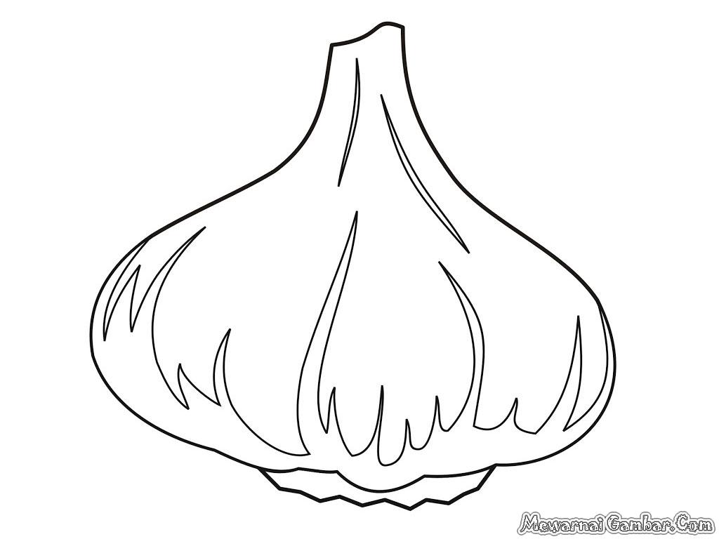 Garlic Coloring Pages Mewarnai Gambar Dinosaurus Terbaru