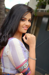 Actress Srimukhi Pictures in Long Dress at Dhana Lakshmi Talupu Tadithe Press Meet  9.JPG