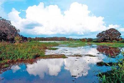 Refugio Nacional de Vida Silvestre Caño Negro