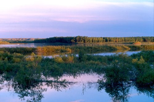 angler,fish,fished,survey,lake,stream,fisherman,southwick