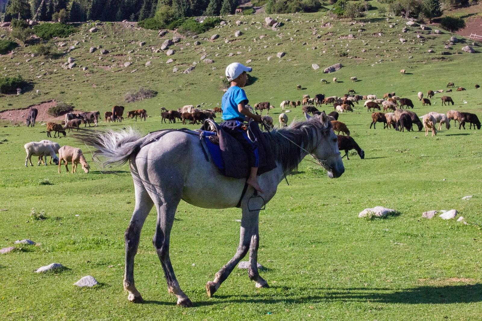 Кыргызстан, Джеты-Огуз, Иссык-Куль, горы, лошадь