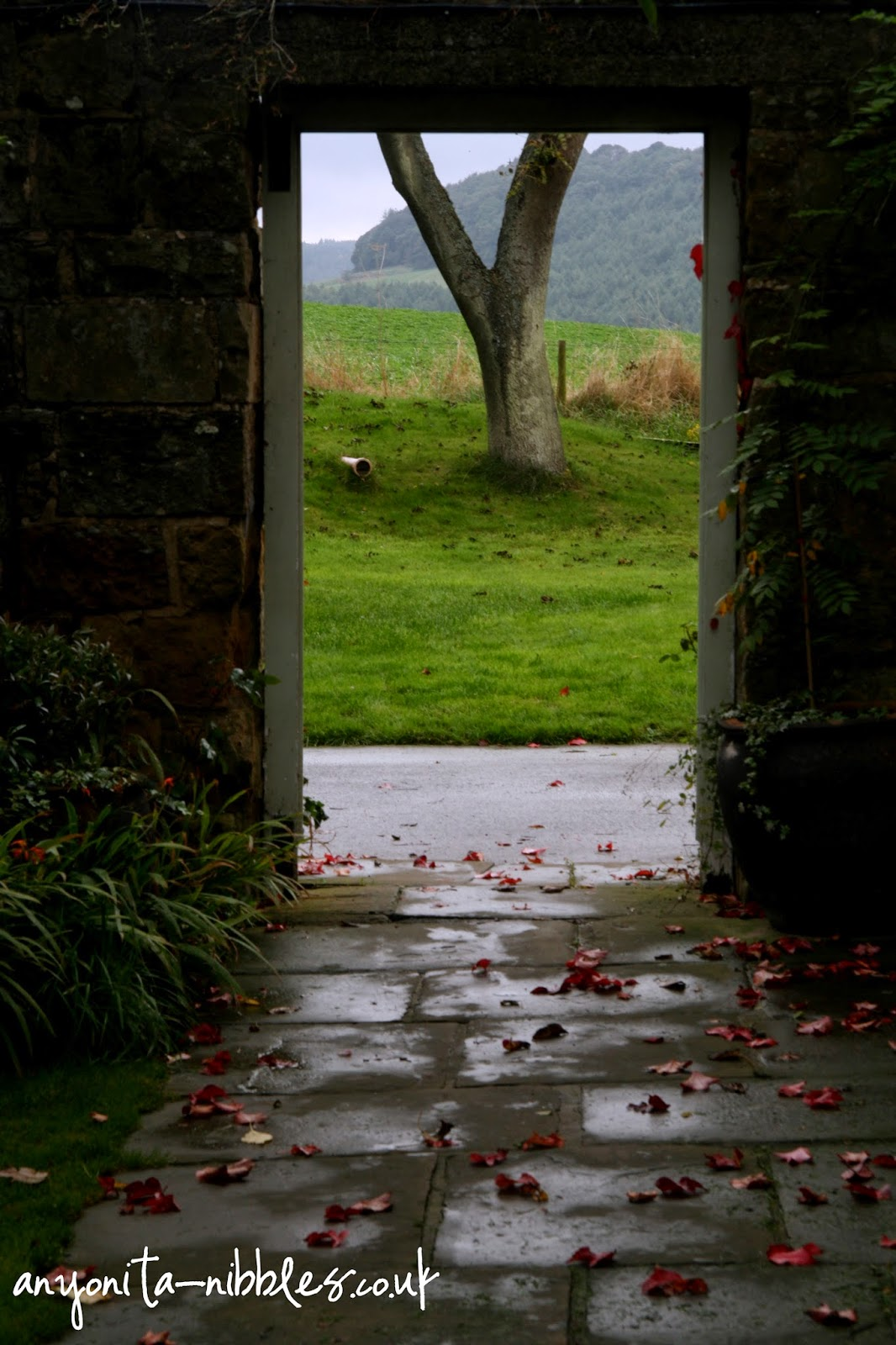 Walk through and into a tranquil pasture at Ox Pasture Hall Hotel | Anyonita-nibbles.co.uk