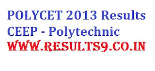 CEEP POLYCET 2013 Results