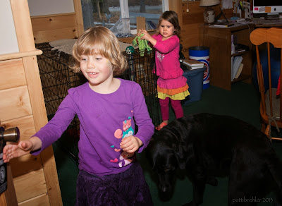 A young girl with blond hair dressed in a purple shirt is reaching for a door knob. A black lab is following her. In the background is another young girl dressed ina pink shirt and skirt. She has a green dog toy in her hands. They are in a room that has a dog crate to the left and the back of a wooden rocking chair to the right.