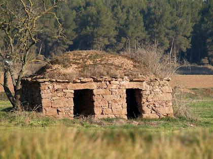 La barraca de vinya dels Plans de Santa Anna