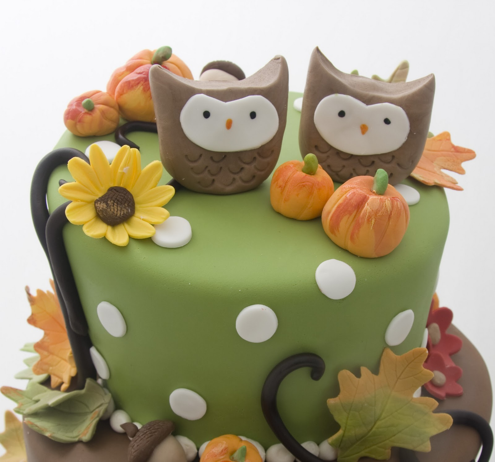 The Crimson Cake Blog Twin Owl Fall Birthday Cake